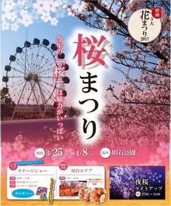 Sakuratop_7